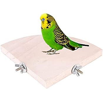 LANSONTECH Plate-Forme D'oiseau de Perche en Bois, Perchoirs à Oiseaux, Support De Repos en Forme D'éventail en Bois, Plate-Forme De Saut d'angle pour Petits Animaux (5.1