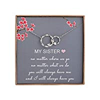 Sister Gifts from Sister - Sterling Silver Interlocking Infinity 2 Circles Necklace for Sisters, Birthday Jewelry Friendship Gifts [並行輸入品]