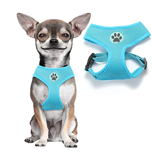 BINGPET Soft Mesh Dog Harness Pet Walking Vest Puppy Padded Harnesses Adjustable, Blue Small