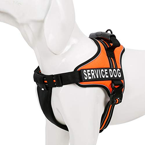 Chai's Choice Service Dog Vest Harness Best Truelove Model with 2 Reflective Service Dog Patches and Sturdy Handle. Matching Padded 3M Reflective Leash Available (Large, Orange)