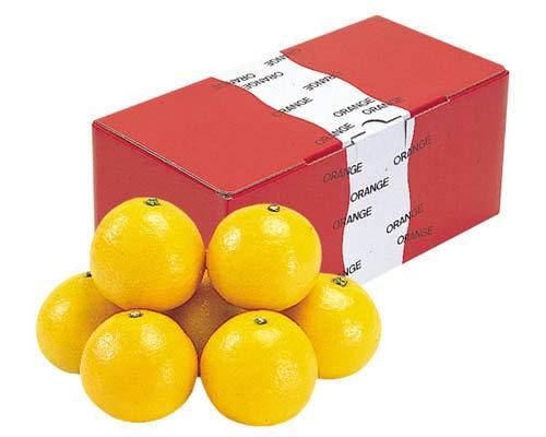 ニューサマーオレンジ(日向夏・小夏みかん) 贈答用 約2.8kg