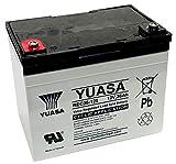 Yuasa REC36-12 Batterie de Chariot de Golf