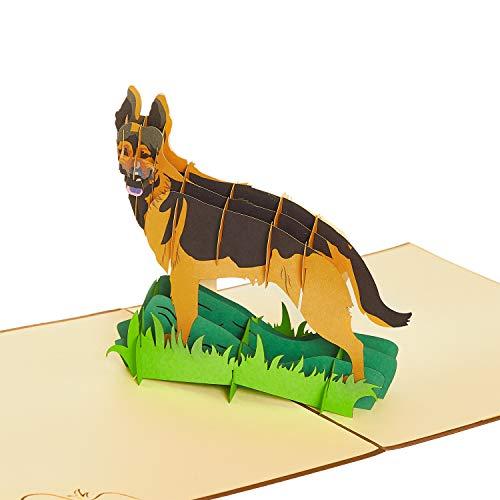 Rykamia German Shepherd Pop Up Card, 6x6', Blank German Shepherd Card, 3D Dog Birthday Card, Get Well, Congratulations Card, Thank You, Anniversary, Graduation Card, German Shepherd Birthday Card