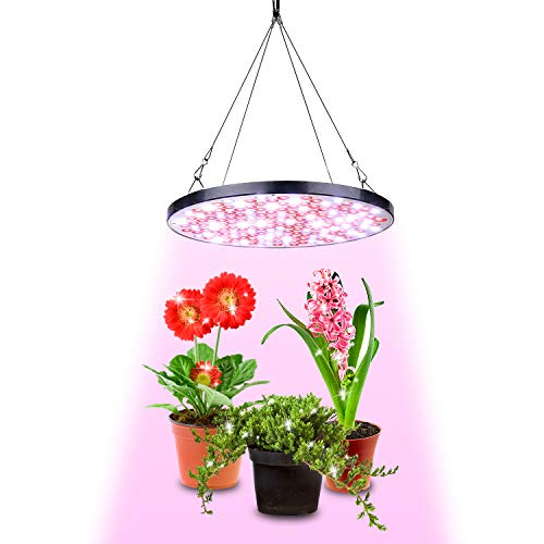 IYMSS 50W LED Grow Light Waterproof, Grow Lights Equivalent, Professional Full Spectrum Plant Grow Light for Indoor Plants, Smart & Silent Grow Lamp for Indoor Garden And Grow Tent