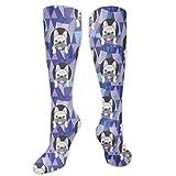 Calzini da donna carini francesi Bulldog Crazy Novelty Funky calzini lunghi polpaccio calzino con design unico sorprendente equitazione calze da donna