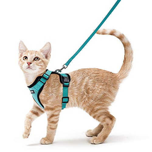 rabbitgoo Cat Harness and Leash for Walking, Escape Proof Soft Adjustable Vest Harnesses...
