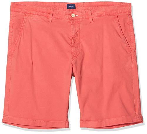 GANT Herren D2. Regular Sunfaded Shorts, Rot (Mineral Red 640), W(Herstellergröße: 31)