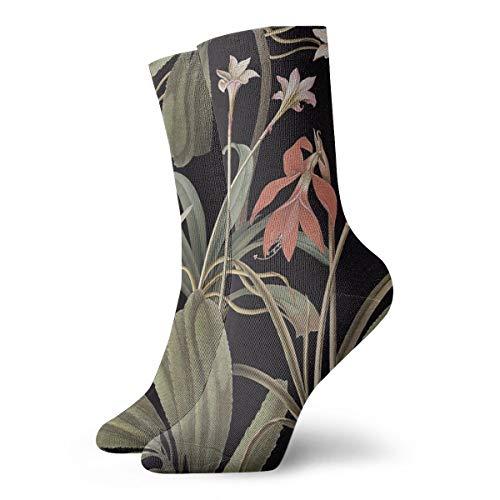 Preisvergleich Produktbild NOT SOLVE GROCERY State Library Victoria Dark Botanical Stravaganza Funny SocksRunning Socks For Women Men 30cm / 11.8inch