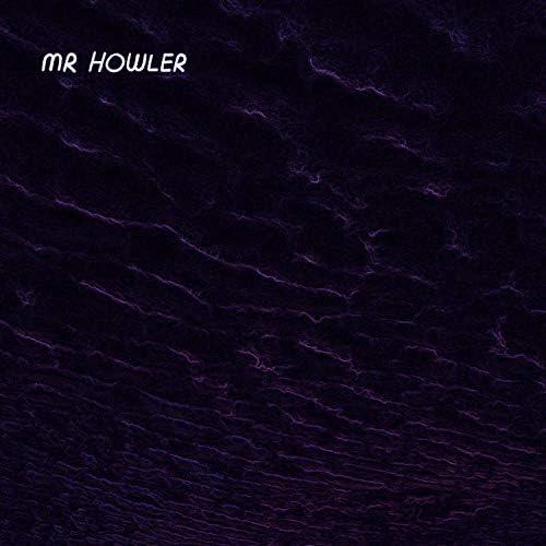 Mr Howler