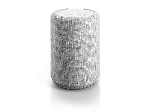 Audio Pro A10 HiFi Portable WiFi Bluetooth Wireless Connected Speakers for Computers, Laptop, Desktop, Cellphone & Tablet Compatible with Alexa - Light Grey