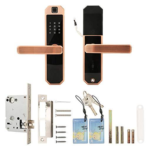 Wandisy Intelligentes Türschloss, Touchscreen-Tastatur-Karte Passwort Fingerabdruck Türschloss mit mechanischem Schlüssel entriegeln