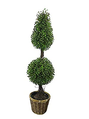 Admired by Nature 3' Artificial Boxwood Leave Double Ball Shaped Topiary Plant Tree in Plastic Pot