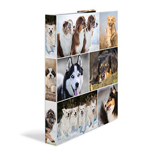HERMA 19358 Ringbuch DIN A4 Tiere Hunde, 4 Ringe, 35 mm breit, schmaler bedruckter Motiv Ringbuchordner aus stabilem Karton, 1 Ringbuchmappe