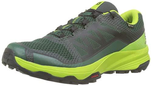 Salomon Herren Trailrunning-Schuhe, XA DISCOVERY GTX, Farbe: Grün (Trekking Green/Lime Green/Black), Größe: 41 1/3