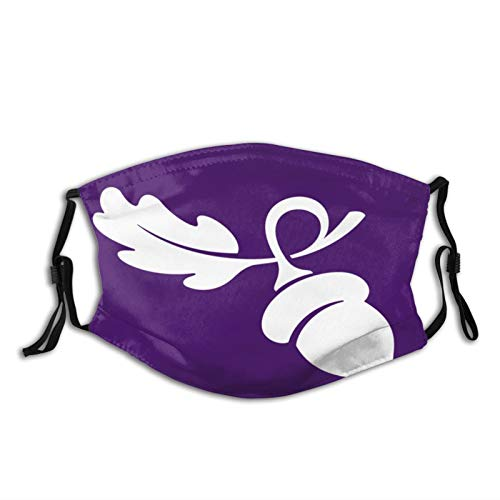 Linfield College Unisex Bandanas with Adjustable Ear Loops and Filter, Outdoor Dust Cloth Mask Mouth Reusable Mask