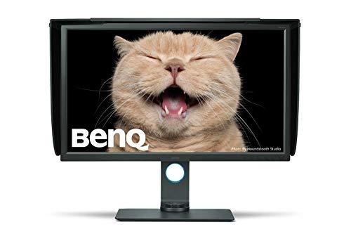 BENQ SW320 - Panel IPS (80,01 cm, 31,5', 4K, 3840 x 2160, 20 millones de píxeles: 1, 250 cd, 5 ms, DP, USB, HDMI, VESA),...