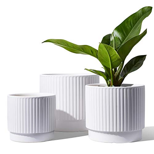 LE TAUCI 5.5+6.5+8 Inch Planter Pots with Drainage Hole, Ceramic Stripe Planters Outdoor Bonsai Container for Plants Flower, Set of 3, White (Plants Not Included)
