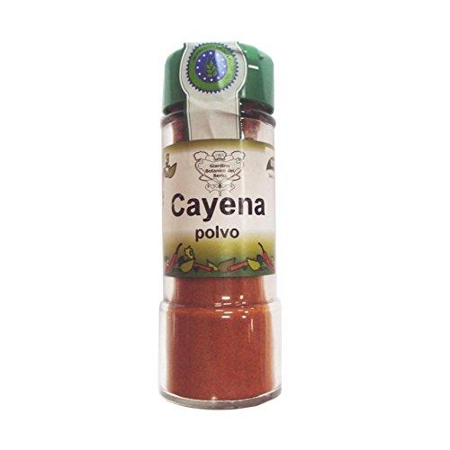 Biocop Condimento Cayena Polvo Biocop 40 G 400 g