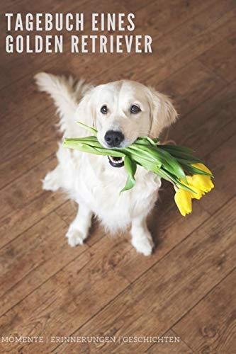 Tagebuch eines Golden Retriever Momente Erinnerungen Geschichten: 120 Seiten liniert in ca. A5 Softcover   Perfekt als Notizbuch für alle kleinen Hundebesitzer, Hundeliebhaber zum Hundetraining