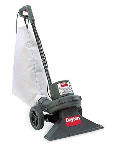 Dayton Vacuum, Indoor/Outdoor