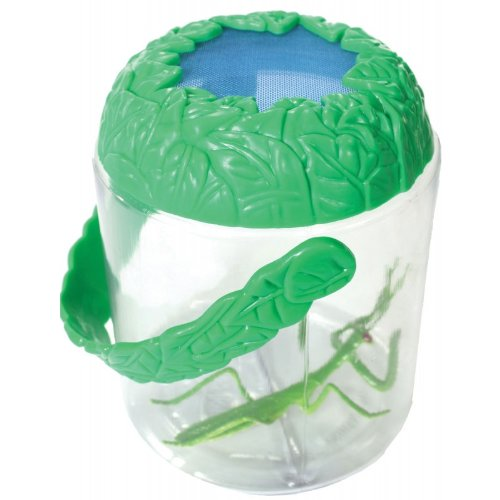 Ventilated Bug Jar - View And Collect Insects Up Close - Safe For Them And Fun For You