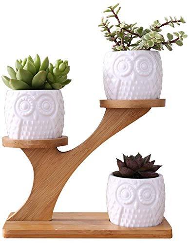 ZGYQGOO Saftige Blume Stehen DREI Schicht Keramik Topf Set Eule Muster Baumförmigen Bambus Rahmen Blumentopf Home Office Kreative Dekorationen (Keine Pflanzen)