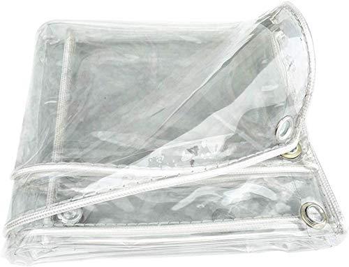 Bbdsj Flugzeug Gewebeplane Transparent Staubdicht Pergola-Deckwagen Verdicktes PVC Wasserdichter Vorhang, 11 Größen, Anpassbar (Color : Clear, Size : 2X2.5M)