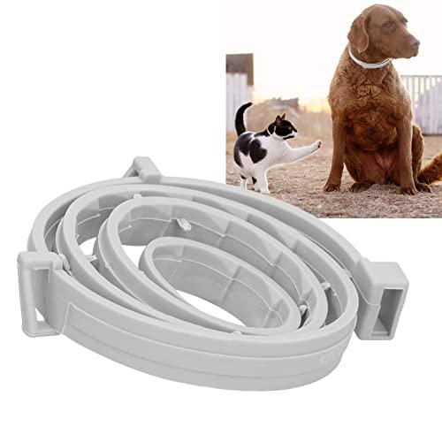 Collar Antipulgas para Perros, Collar Repelente De Mosquitos Portátil Ajustable De Goma, Correa para El Cuello con Control De ácaros para Gatos, Suministros para Mascotas(OPP Pack-Big Dog)