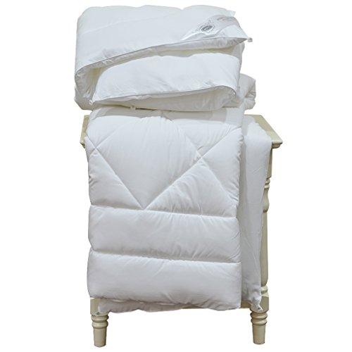 MMM Hiver Quilts Dortoir Bureau Siècle Épaississement Garder Chaud Étudiant Couette Simple Lit (taille : 150 * 230cm)