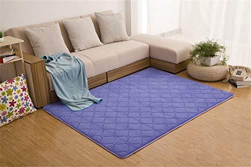 Woonkamerdecoratie, koraalfluff, modern, eenvoudig, rechthoekig, dik tapijt, woonkamer, salontafel, slaapkamer (60 x 200 cm) 120*200cm Blauw