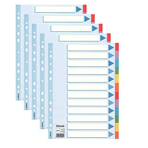 5 Stück Leitz Kartonregister Standard Blanko, A4, Karton, 12 Blatt