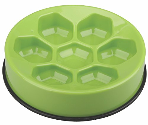 M-PETS Cavity Slow Feed Bowl Round Light Green pour Chien Vert