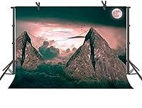 HDの明るい夜空の満月の背景写真の背景写真用品スタジオ小道具7x5ft DSFU055
