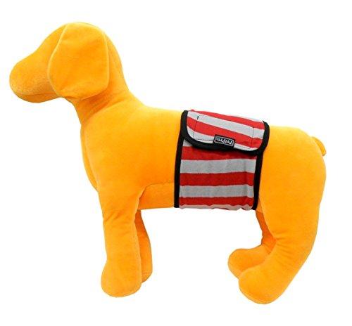 ペットプロ マナーベルト 犬用 M グレー/レッドボーダー