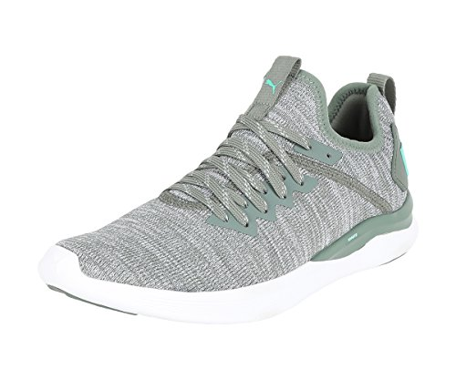 Puma IGNITE Flash evoKNIT Wn's, Damen Laufschuhe, Grau (Laurel Wreath-Quarry-Biscay Green), 37.5 EU ( UK)