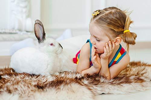 1000 stukjes puzzel Meisje met konijn, puzzel spel speelgoed vakantiegift 75x50cm