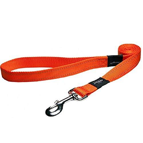 Rogz Fanbelt Hundeleine, reflektierend, Größe L, Orange