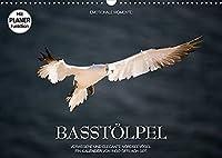 Emotionale Momente: Basstoelpel (Wandkalender 2022 DIN A3 quer): Elegante und verwegene Nordseevoegel. (Geburtstagskalender, 14 Seiten )