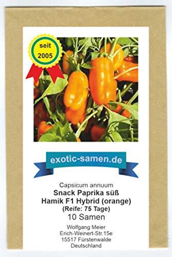 Snack Paprika orange - Mini Blockpaprika für Balkon und Terrasse - süß und mild - Hamik F1 - Yummy orange - 10 Samen