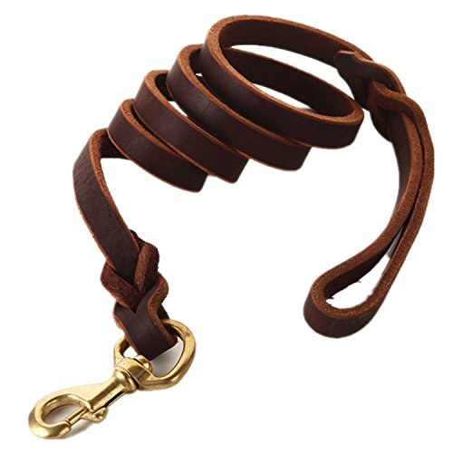 FAIRWIN Braided Leather Dog Leash 6 Foot