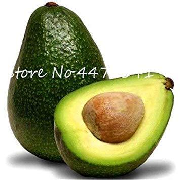 . Nouveau 5 pièces d'avocat, délicieux Nain Arbres fruitiers Doux Fruits Bio légumes Plante en Pot Bricolage Jardin Facile à cultiver: 5