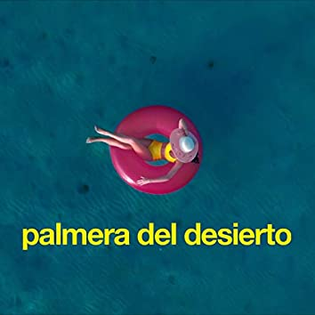 Palmera Del Desierto