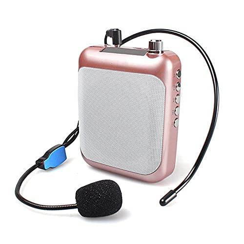 Amplificador De Voz Amplificador De Voz Megáfono Micrófono Booster Mini Altavoz Portátil Profesional Mic con FM para Profesor para Profesores