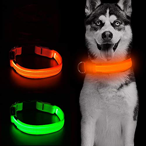 Candofly LED Dog Collar, USB Rechargeable Glow in The...
