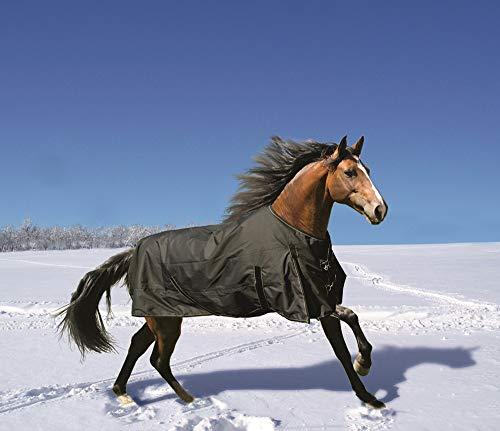 Euroriding Winterdecke Fairbanks Ausführung 100g (schwarz, 135cm)