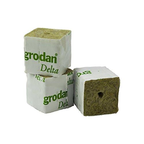GRODAN Delta 4cm x 4cm x 4,5cm in diverse quantità incluso greenception wuchs fertilizzante 100G