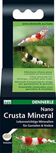 Dennerle Nano Crusta Mineral 35g |Mineralien für Gesundheit und Farbenpracht von Garnelen und Krebsen