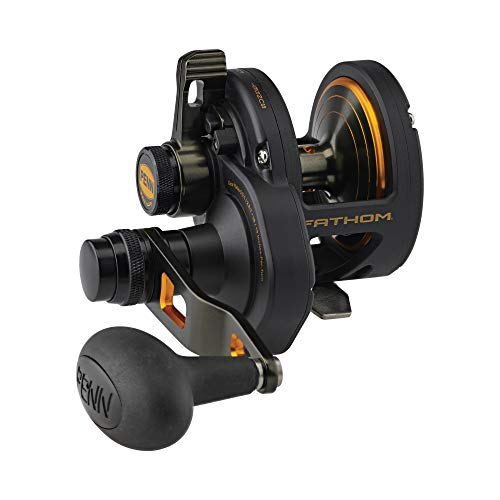 PENN Fishing Penn Fathom Lever Drag 2 Speed Conventional Fishing Reel, Black Gold, 15XN (FTH15XNLD2)