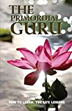 The Primordial Guru: How To Learn The Life Lessons: Hard Life Lessons To Learn (English Edition)