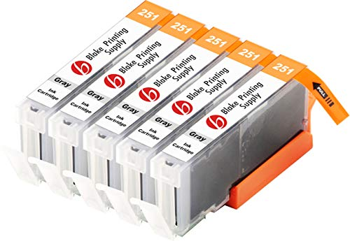 Blake Printing Supply Compatible Ink Cartridge Replacement for Canon PGI-250XL, CLI-251XL, Canon 251, Canon 250 (Gray, 5-Pack)